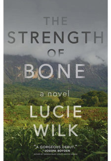 The Strength of Bone